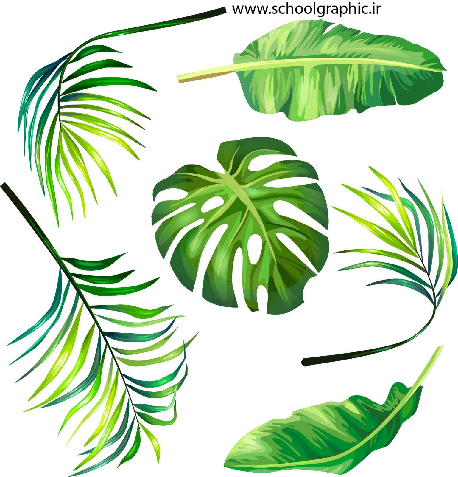 دانلود وکتور لایه باز برگ سبز برای ایلوستریتور