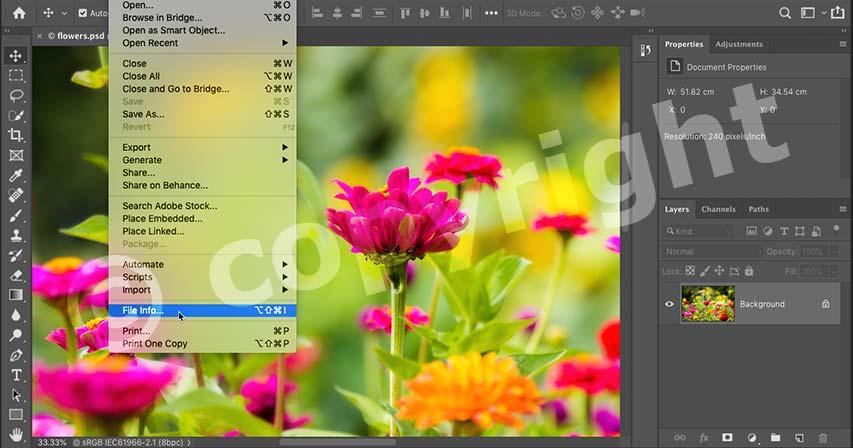 افزودن اطلاعات تماس و کپی رایت به تصاویر در فتوشاپ